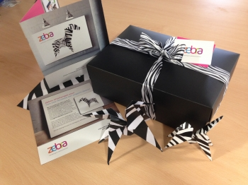 Zebra Origami Challenge